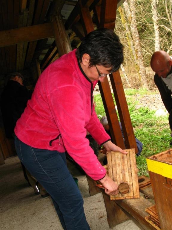 Nettoyage des ruches